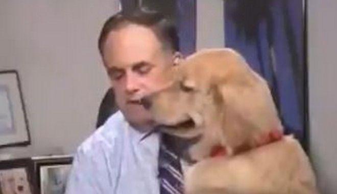 """Ο σκύλος """"Brody"""""""