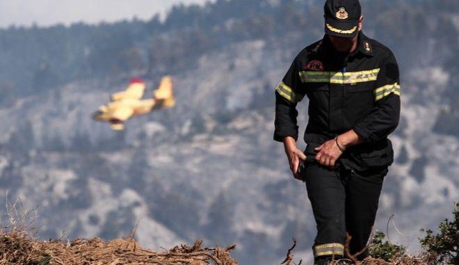 Τιτάνια μάχη με τις αναζωπυρώσεις δίνουν οι πυροσβέστες στην Εύβοια