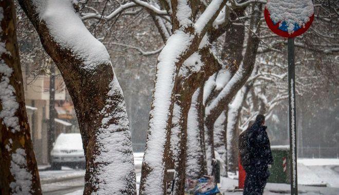 Χιονόπτωση στην πόλη της Κοζάνης