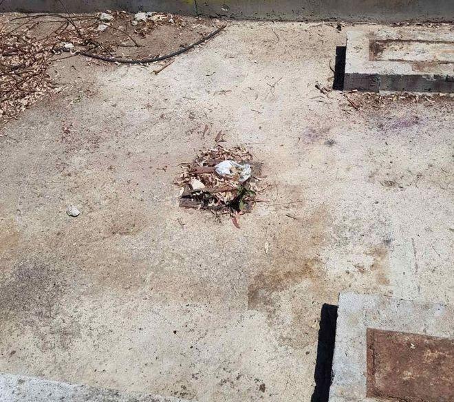 Τελικός Κυπέλλου: Βρέθηκαν κρυμμένες μολότοφ στο Άλσος Ν. Φιλαδέλφειας