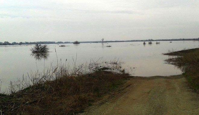 Στιγμιότυπο από πλημμυρισμένη περιοχή στον Έβρο εξαιτίας του σπασίματος των αναχωμάτων. (WWW.E-EVROS.GR/EUROKINISSI)