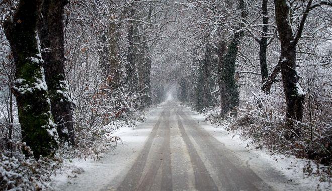 Δρόμος περνά μέσα από χιονισμένα πλατάνια στην Λαζαρίνα την Πέμπτη 3 Ιανουάριου 2019.