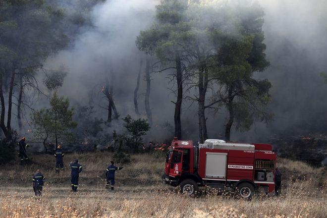 Πυροσβέστες στο χωριό Μακρυμάλλη