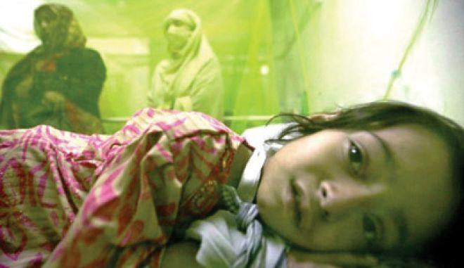 """Παραγουάη: """"Θερίζει"""" ο δάγκειος πυρετός"""