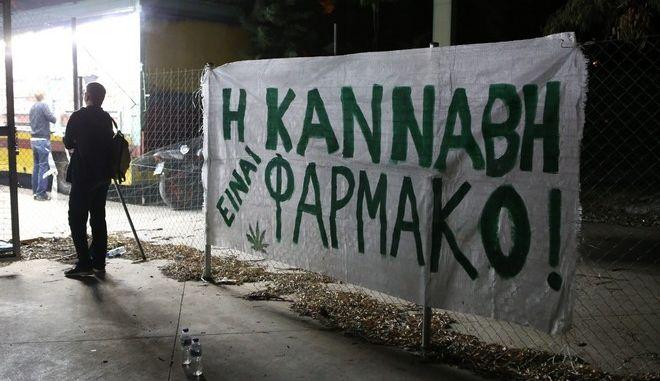 Έκθεση Κομισιόν: Διαδεδομένη η κάνναβη στην Ελλάδα