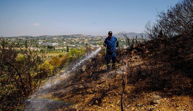 Εικόνα από την κατάσβεση της φωτιάς στα Σπάτα
