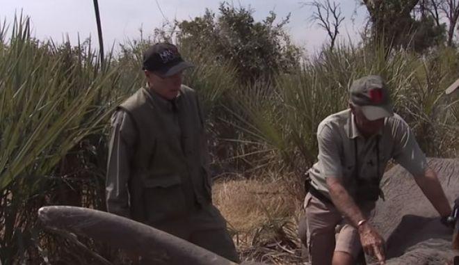 Ο Γουέιν ΛαΠιερ ενώ έχει πυροβολήσει τον ελέφαντα