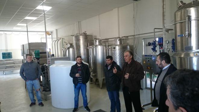 Το πρώτο εργοστάσιο στέβιας στην Ευρώπη βρίσκεται στην Καρδίτσα!