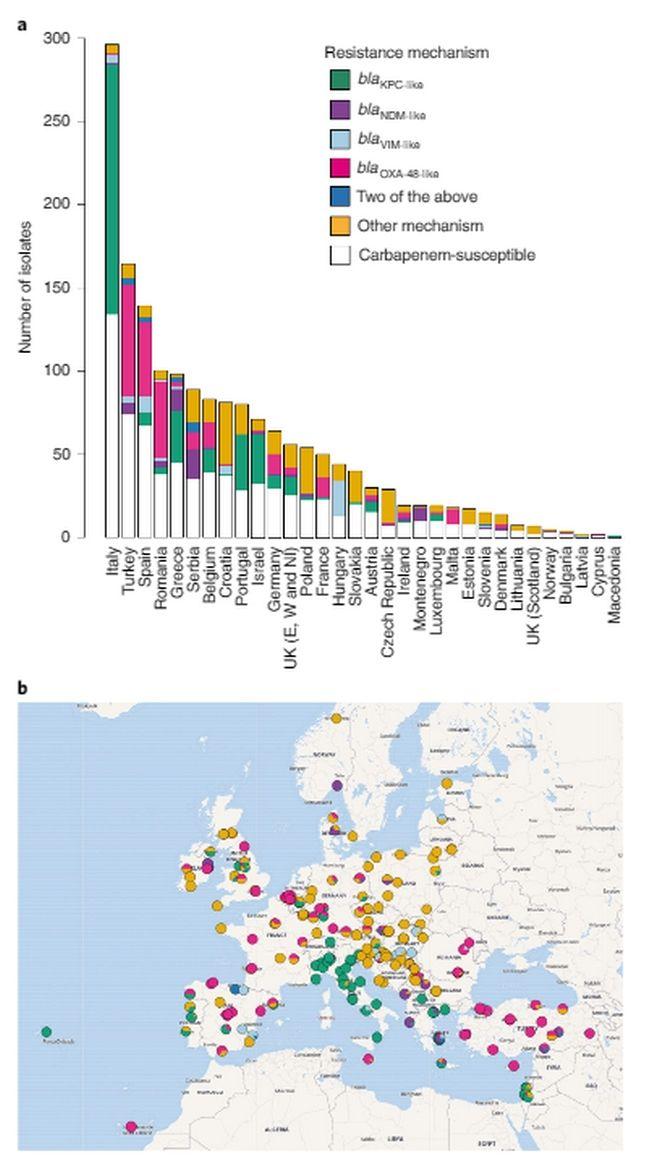 Ανησυχία για την εξάπλωση πολύ ανθεκτικών μικροβίων στην Ευρώπη – Μεγάλο πρόβλημα στα ελληνικά νοσοκομεία