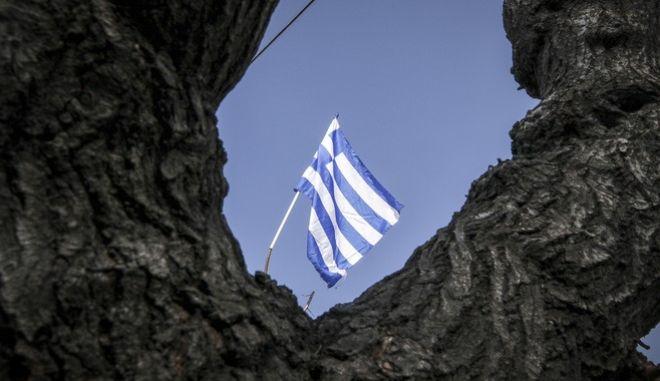Η σημαία της Βουλής των Ελλήνων, την Τετάρτη 7 Φεβρουαρίου 2018. (EUROKINISSI/ΓΙΩΡΓΟΣ ΚΟΝΤΑΡΙΝΗΣ)