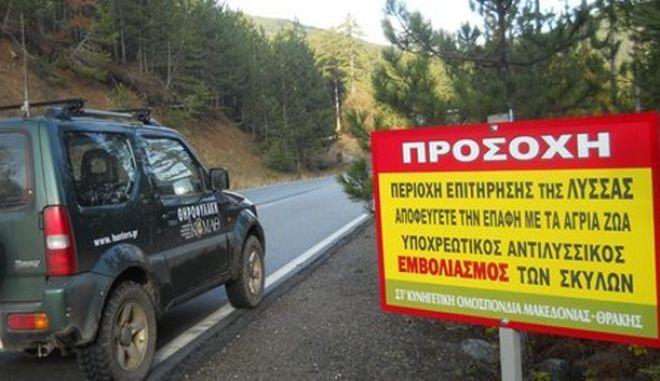 Κίνδυνος για τη δημόσια υγεία από κρούσμα λύσσας στη Θεσσαλονίκη