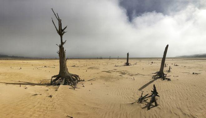 Ξηρασία στην Αφρική