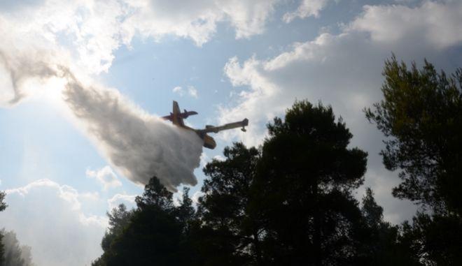 Στιγμιότυπο από επιχείρηση της Πυροσβεστικής για την κατάσβεση δασικής πυρκαγιάς