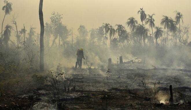 Στις φλόγες ο Αμαζόνιος. Φωτογραφία Αρχείου