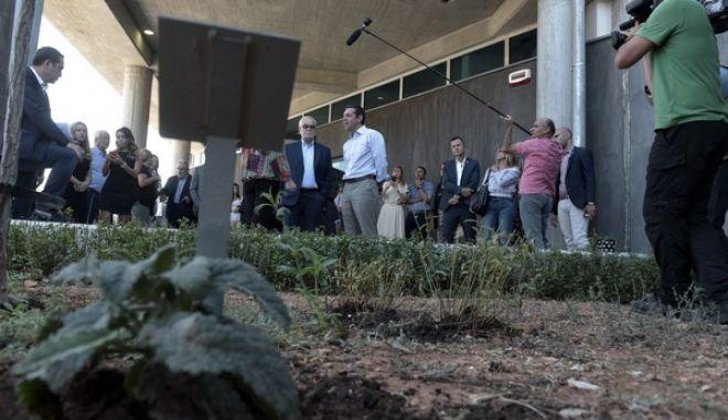 Επίσκεψη του πρωθυπουργού, Αλέξη Τσίπρα στις εγκαταστάσεις της Apivita, στο Μαρκόπουλο Αττικής, την Δευτέρα 4 Σεπτεμβρίου 2017. (EUROKINISSI/ΤΑΤΙΑΝΑ ΜΠΟΛΑΡΗ)