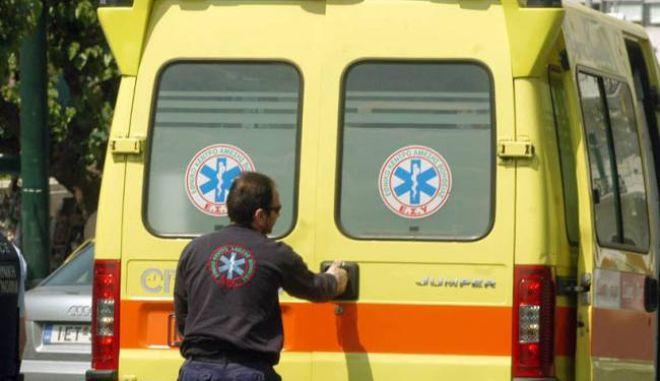 Εύβοια: Στο νοσοκομείο 11χρονο αγόρι που το δάγκωσε σκύλος