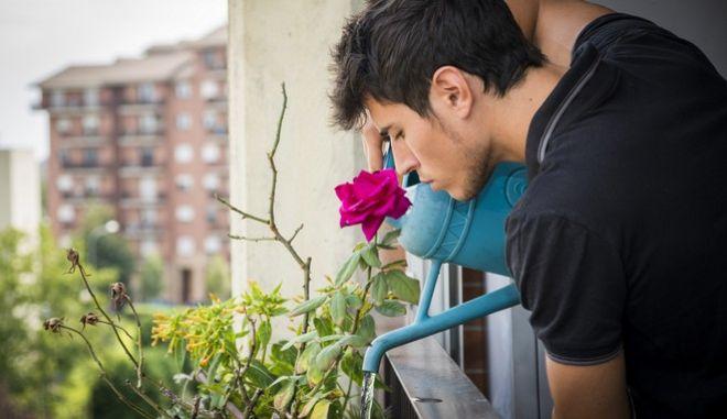 Στον κήπο σας... λουλούδια
