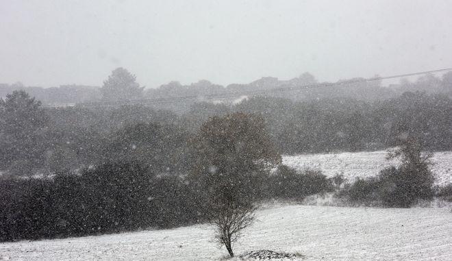 Snowfall in the norther eastern suburb of Asvestochori in Thessaloniki, Greece on November 29, 2016. /  o  , , 29  2016.