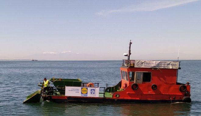 Η Lidl Ελλάς αναλαμβάνει και πάλι τη στήριξη του έργου αντιρρύπανσης και καθαρισμού του θερμαϊκού κόλπου