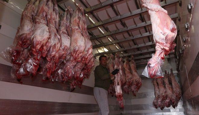 Αρχισε σιγά σιγά  η τροφοδοσία των καταστημάτων και ιδιαίτερα των κρεοπωλείων εν οψη του Πάσχα