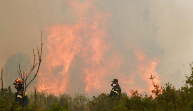 Φωτιά στο Κρυονέρι