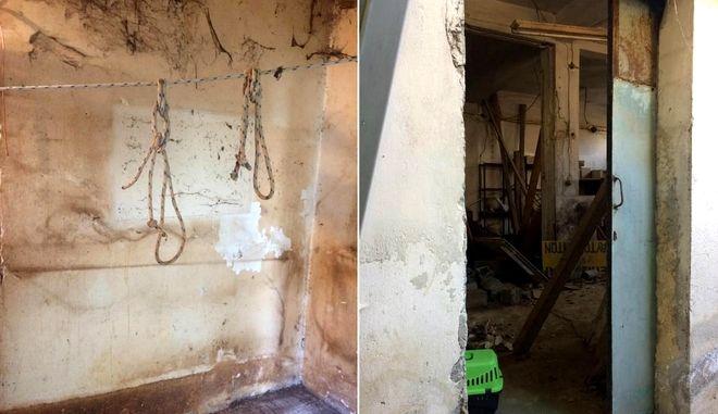 Φρίκη στο Μοσχάτο: Δεκάδες πτώματα και σκελετοί ζώων ανακαλύφθηκαν σε σπίτι