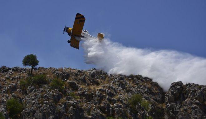 Πυροσβεστικό αεροσκάφος πραγματοποιεί ρίψεις νερού - Φωτογραφία αρχείου