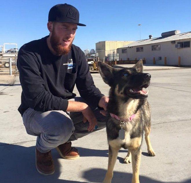 Luna, η σκυλίτσα που κατάφερε να επιβιώσει 5 εβδομάδες σε ερημικό νησί