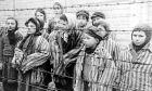 Ημέρα Μνήμης του Ολοκαυτώματος των Τσιγγάνων
