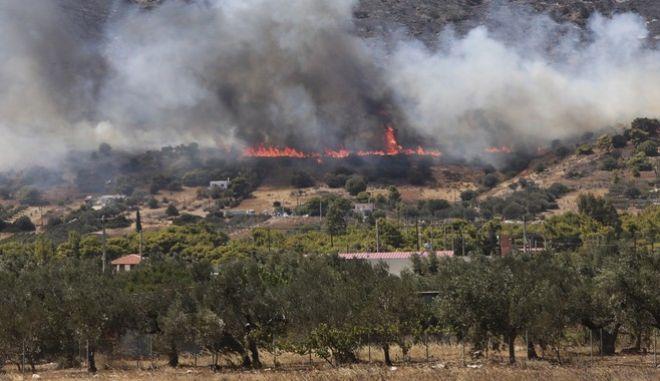Στιγμιότυπο από τη φωτιά στην Κερατέα.