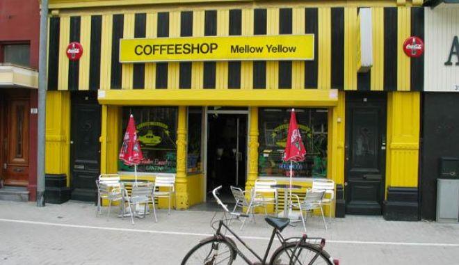Μαριχουάνα στις καφετέριες σε Κολοράντο και Ουάσινγκτον