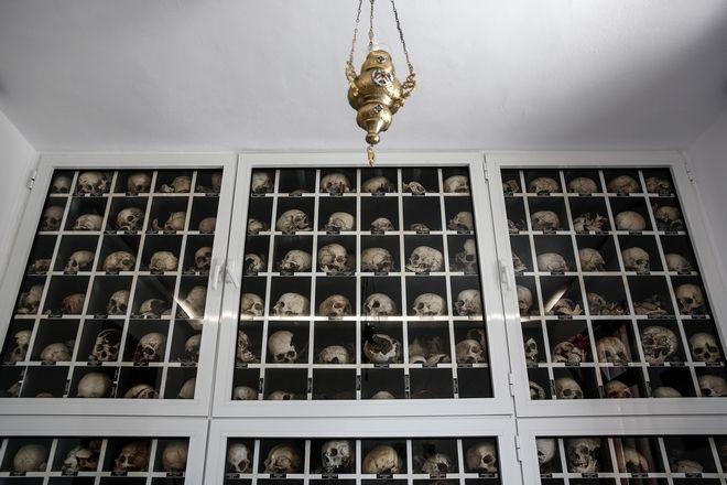 Κρανία θυμάτων της σφαγής στο Δίστομο