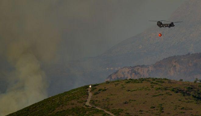 Πυρκαγιά στην περιοχή Μακρυχώρι Ευβοίας