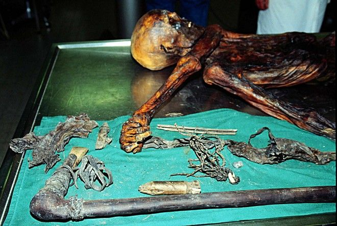 Ότζι, ο άνθρωπος των πάγων: Τι έφαγε πριν πεθάνει, 5.300 χρόνια πριν