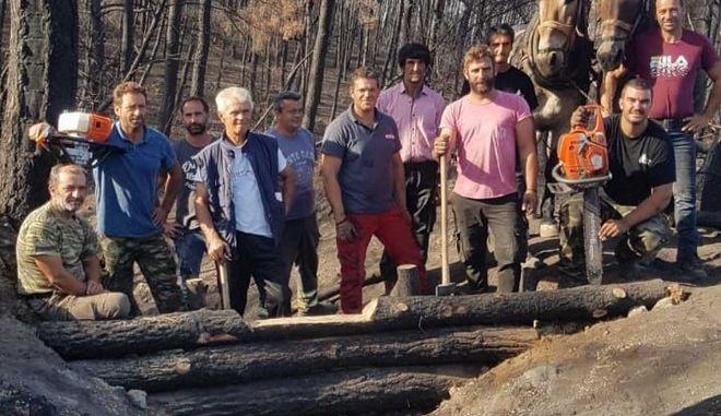 Βόρεια Εύβοια: Σε εξέλιξη οι εργασίες αποκατάστασης των πυρόπληκτων περιοχών