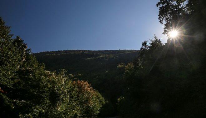 Φθινοπωρινές εικόνες από το νομό Λαρίσης