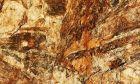 Κως: Μουσείο απολιθωμάτων και πετρωμάτων χάρη σε 19χρονο φοιτητή