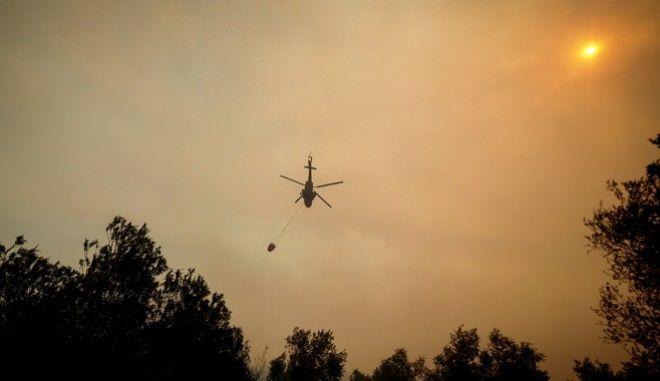Εικόνα από την φωτιά στις Ροβιές Ευβοίας