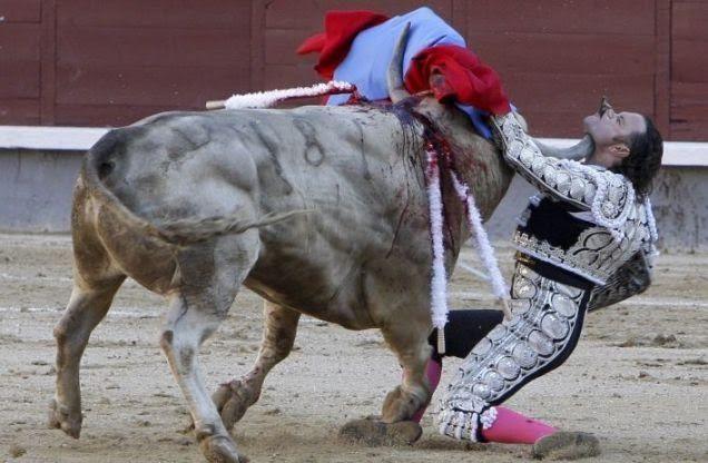 Μία εικόνα 1000 λέξεις: Όταν νικάει ο ταύρος