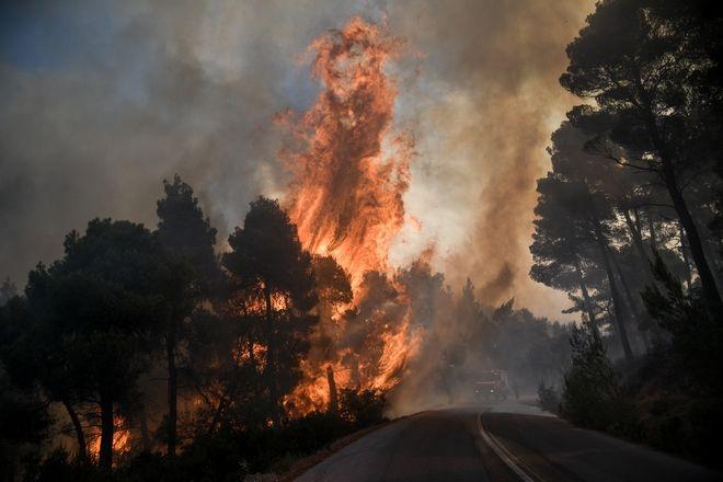 Πυρκαγιά σε δασική έκταση στην περιοχή Αγριλίτσα του δήμου Διρφύων-Μεσσαπίων, στην Εύβοια την τρίτη 13 Αυγούστου 2019. Η φωτιά ξέσπασε περίπου στις 03:10 και καίει πευκοδάσος Natura, που είναι καταφύγιo άγριας ζωής, ενώ έχουν κινητοποιηθεί μεγάλες δυνάμεις της Πυροσβεστικής. (EUROKINISSI/ΜΙΧΑΛΗΣ ΚΑΡΑΓΙΑΝΝΗΣ)