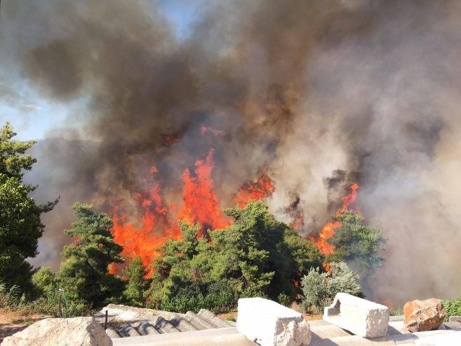 Καίγονται σπίτια στον Κάλαμο. Εκκενώθηκαν κατασκηνώσεις