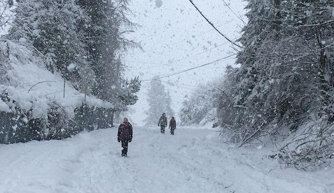 Χιονοθύελλα στον Καναδά - φωτογραφία αρχείου