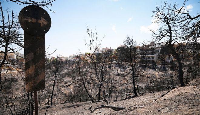 Στιγμιότυπα από το κατεστραμένο από την πυρκαγιά Μάτι