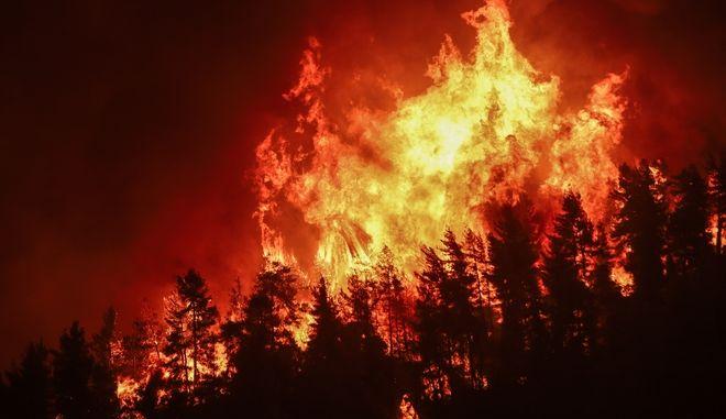 Φωτιά στην Εύβοια (φωτογραφία αρχείου)