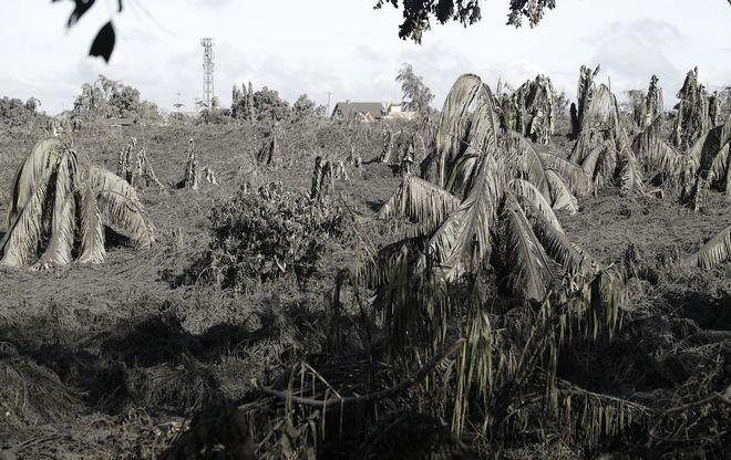 Στάχτη σκεπάζει τα πάντα σε πόλη των Φιλιππίνων μετά το ξύπνημα του ηφαιστείου Ταάλ