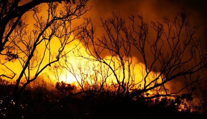 Εικόνες από την πυρκαγιά στην Αυστραλία