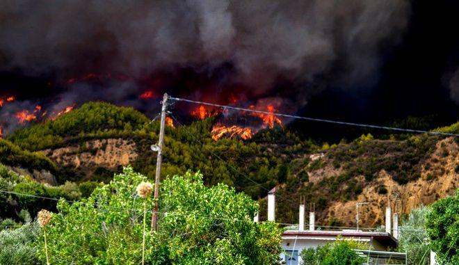 Φωτιά στην περιοχή Ηρακλεια του δήμου Αρχαίας Ολυμπίας
