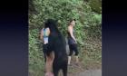 Αρκούδα πλησιάζει ορειβάτες