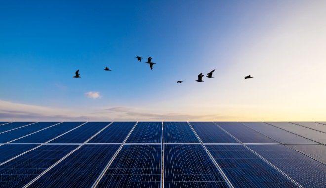Sustainability στην ενέργεια: Το φωτεινό παράδειγμα της Protergia