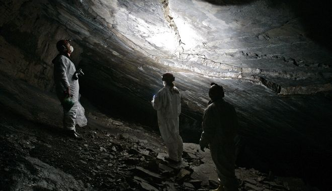 Βιολόγοι κάνουν έρευνες σε σπήλαιο με νυχτερίδες